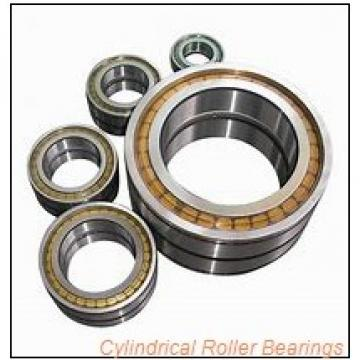 2.559 Inch | 65 Millimeter x 5.512 Inch | 140 Millimeter x 1.299 Inch | 33 Millimeter  CONSOLIDATED BEARING NJ-313E M  Cylindrical Roller Bearings