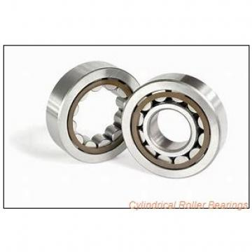 1.772 Inch | 45 Millimeter x 3.937 Inch | 100 Millimeter x 1.417 Inch | 36 Millimeter  CONSOLIDATED BEARING NUP-2309E  Cylindrical Roller Bearings